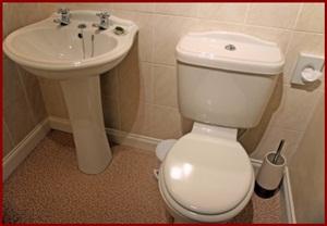 Bathroom Scrub Down