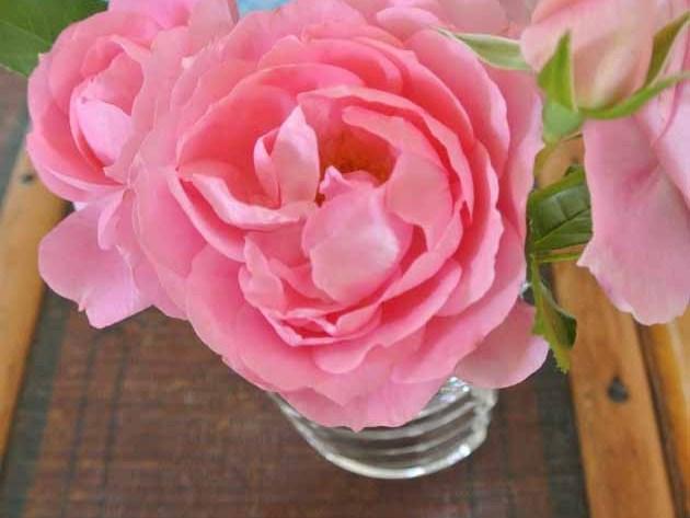 #2Flowergirls Rosa Rosen aus dem Garten in Baccarat Vase happyhomeblog