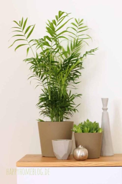 Pflanzen im Schlafzimmer auf meiner neuen Kommode von Monoqi by happyhomeblog.de