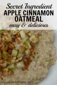 Secret Ingredient Apple Cinnamon Oatmeal