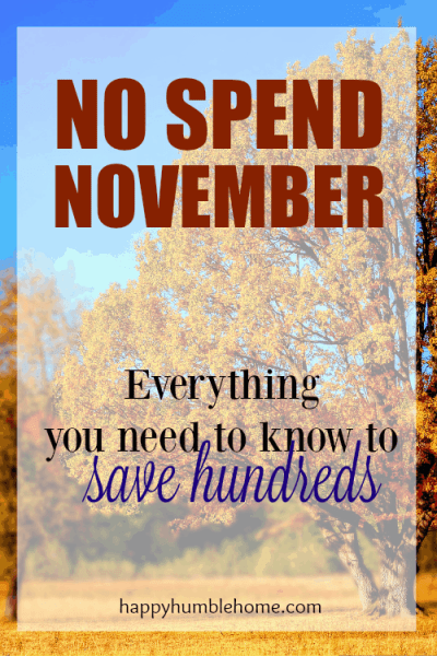 No Spend November- Everything you need to know to save hundreds! I saved so much money and now it will be so much easier to pay for Christmas this year! Must Read!!