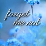Book Blitz: Forget Me Not by Allison Blanchard