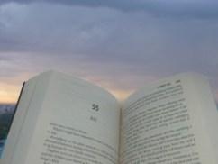 bookamongtheclouds theauslibrary (Custom)