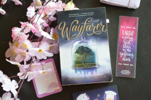 Wayfarer Review: Time Travelling Alternate Histories