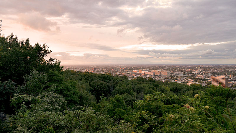 Mont-Royal view of Montreal. Sunset