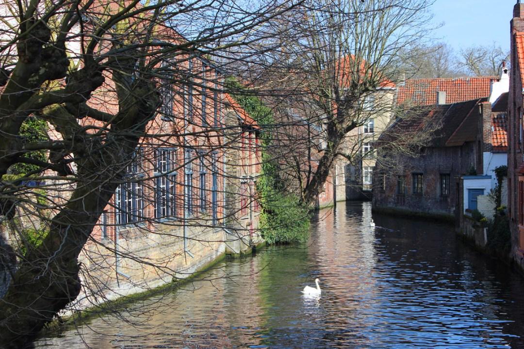 Bruges-voyage-copyright-happynewgreen-38