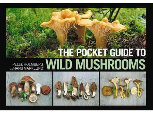 Hans Poisonous Mushroom