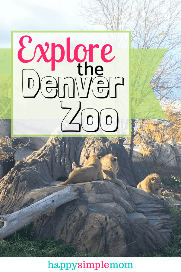 Things You May Not Know About the Denver Zoo