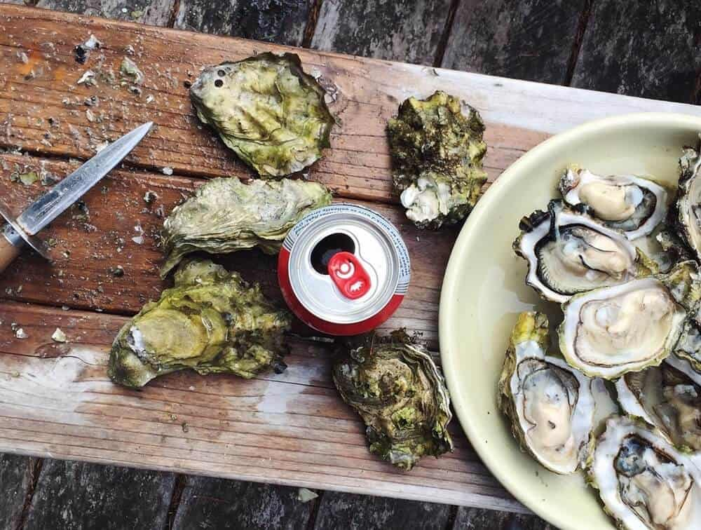Absolute Best Place for Oysters | Apalachicola, Florida | Florida Oysters | Raw Oysters