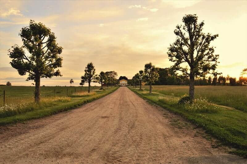 Should you move to a rural area?