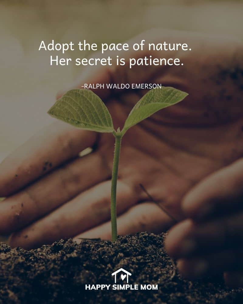 Adopt the pace of nature. Her secret is patience. - Ralph Waldo Emerson