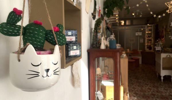 pot chat plante suspension suspendu corde diy cactus plant lover plante pour tous passion botanique cat lady chou chaton déco intérieur jungle félin lyon happy sisyphe concept store boutique créateur