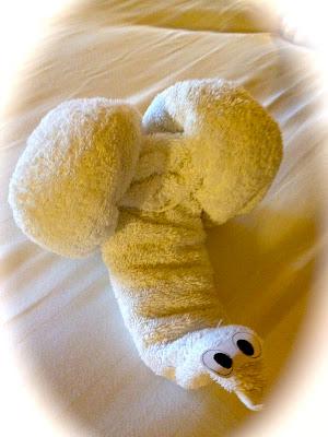 Snail Towel Animal