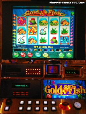 My favorite slot machine, the Goldfish