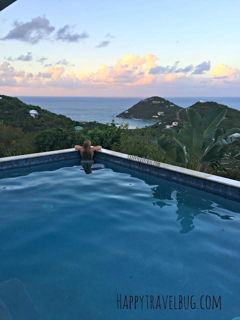 Blue Agave pool in St. John, USVI