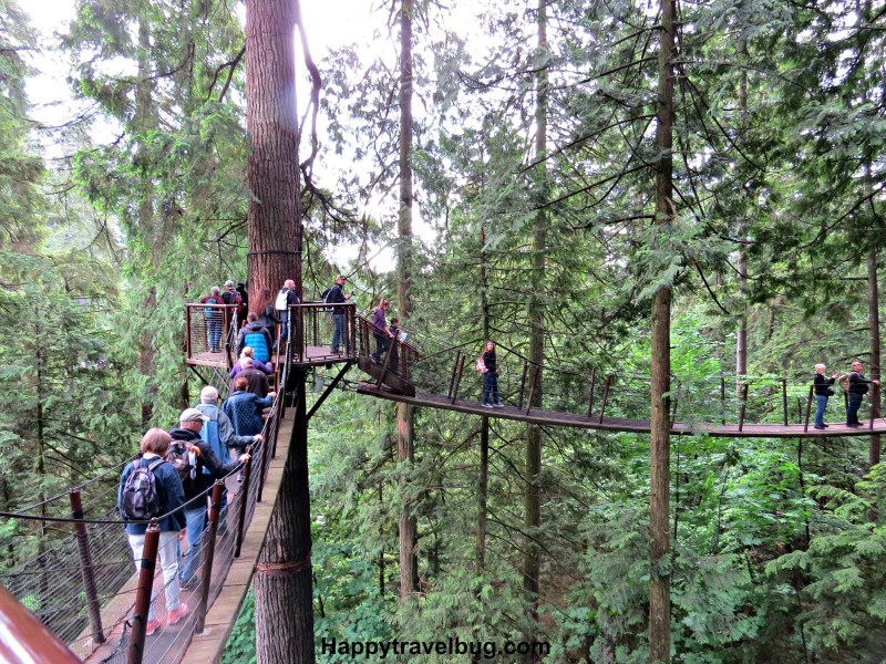 Treetops Adventure at Capilano Suspension Bridge Park in Vancouver, Canada