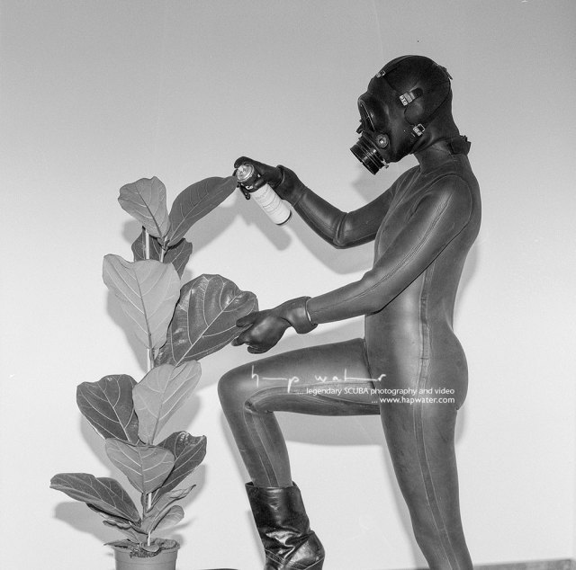 Frogwoman Claudia spraying indoor plant whilst wearing a full neoprene wetsuit, rubber gloves and a gas mask