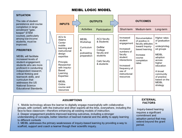MEIBL Logic Model