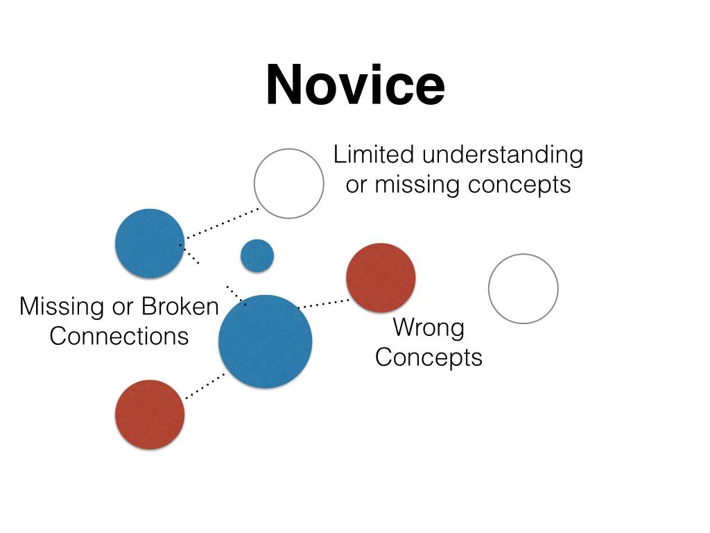 Novice Conceptual Framework