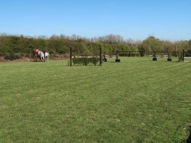 Image of the grass natural show jumping course