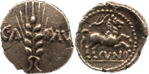 Many British Iron Age coins feature horses. The various tribes depicted horses in very different ways. This Trinovantes horse is more naturalistic than the disjointed horses shown on Corieltavian coins.
