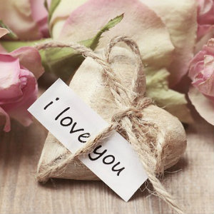 A small wooden heart with twine and a paper sign that says I love you and pink roses nearby