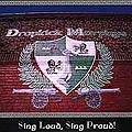 Dropkick Murphys - Sing loud