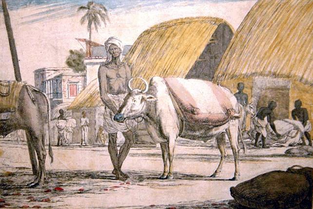 গো-ধনঃ বৈদিক যুগে মানুষের কাছে 'গো-ধন' ছিল সর্বাপেক্ষা উল্লেখযোগ্য ধন-সম্পদ।