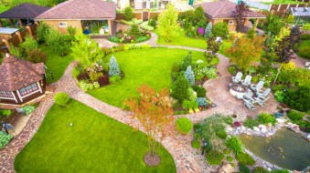 How to Properly Integrate Trees into Your Landscape Design