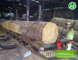 Harga Kayu Kalimantan