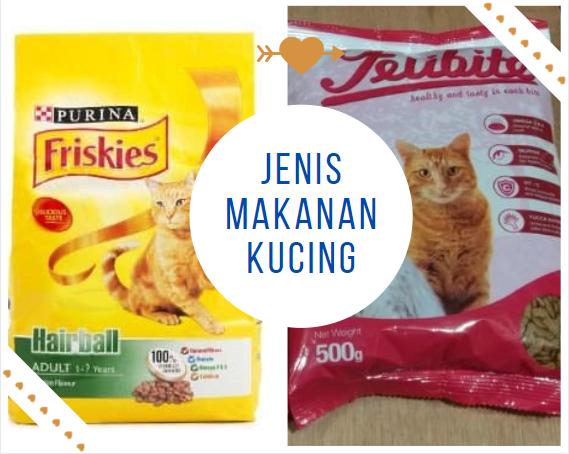 Jenis Makanan Kucing Kampung