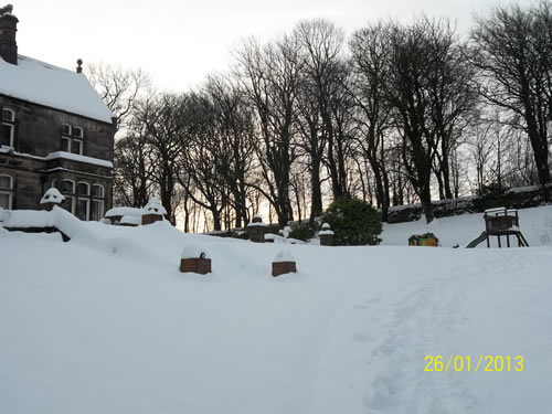 snow in the grounds