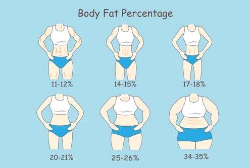 Weight Loss Calculator Percent   Treadmill, Elliptical Trainer ...