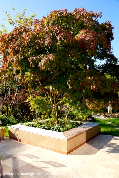 Fächerahorn Sitzfläche Sonnenbad Liegefläche Travertin Natursteinplatten