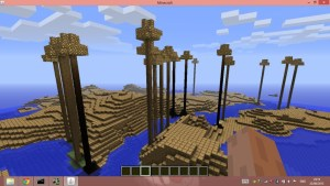 Minecraft picture protected port