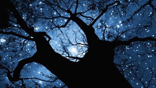 Baum der Religionen