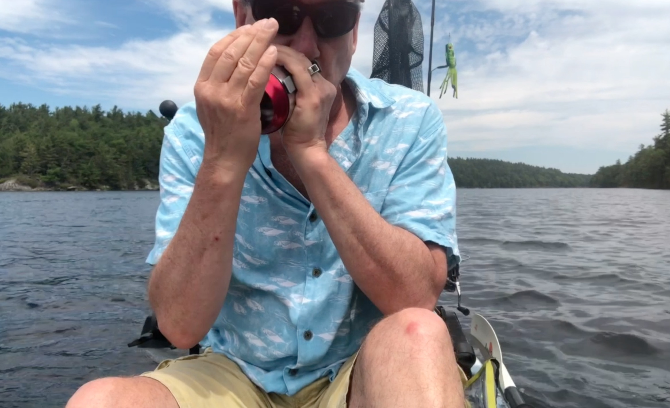 Using Harmonica Effects To Catch Fish??