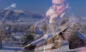 Christmas songs harmonica