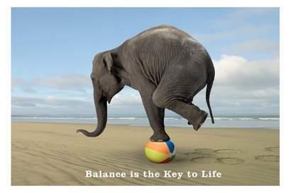 Bildresultat för hälsa balans bilder