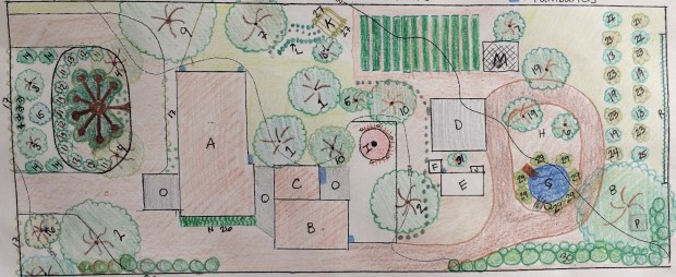 edible landscape design process