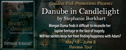Reviews_DanubeInCandlelight_Banner copy