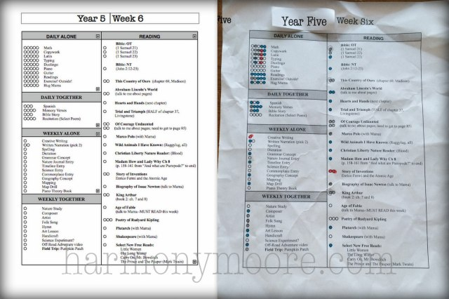 Year 5, Week 6, created with Ambleside Online as our spine.
