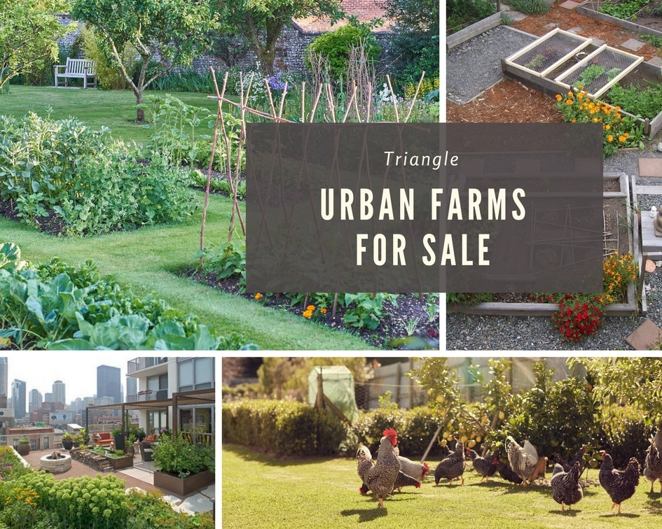 triangle urban farms for sale
