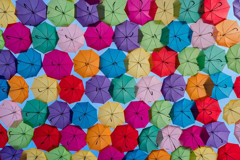 Agueda Umbrella Panorama