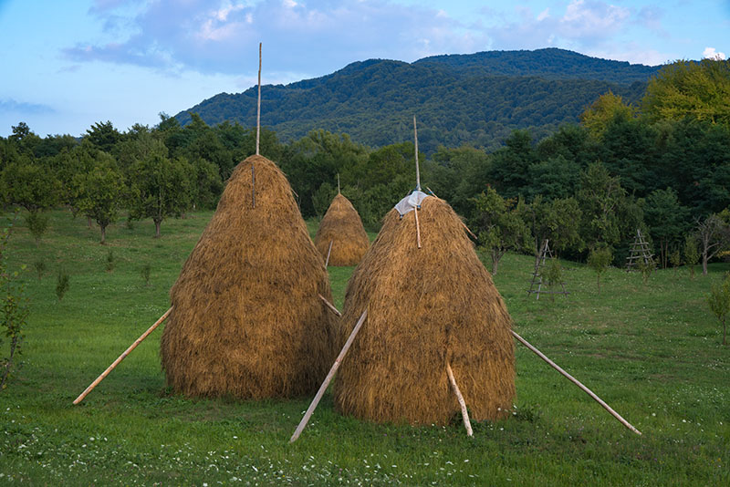 Three Romanian Haystacks