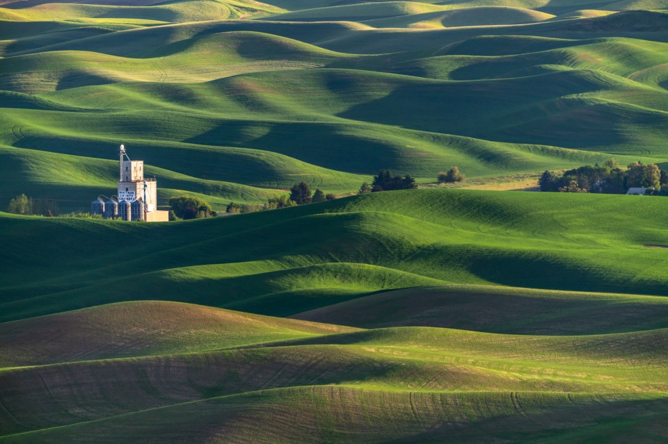 Iconic Steptoe Butte view