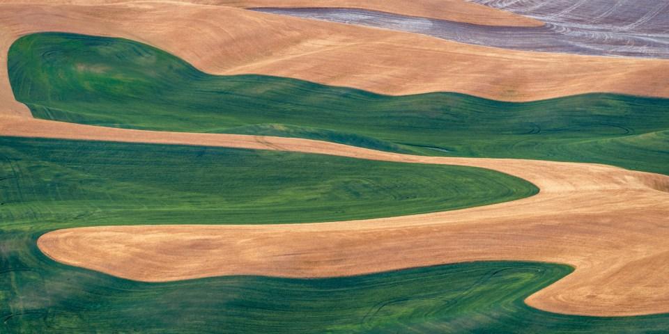 Crop Designs from Steptoe Butte
