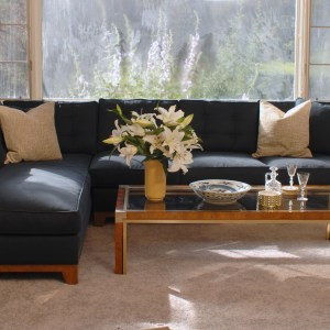 Navy blue sofa in a living room with decor and plants