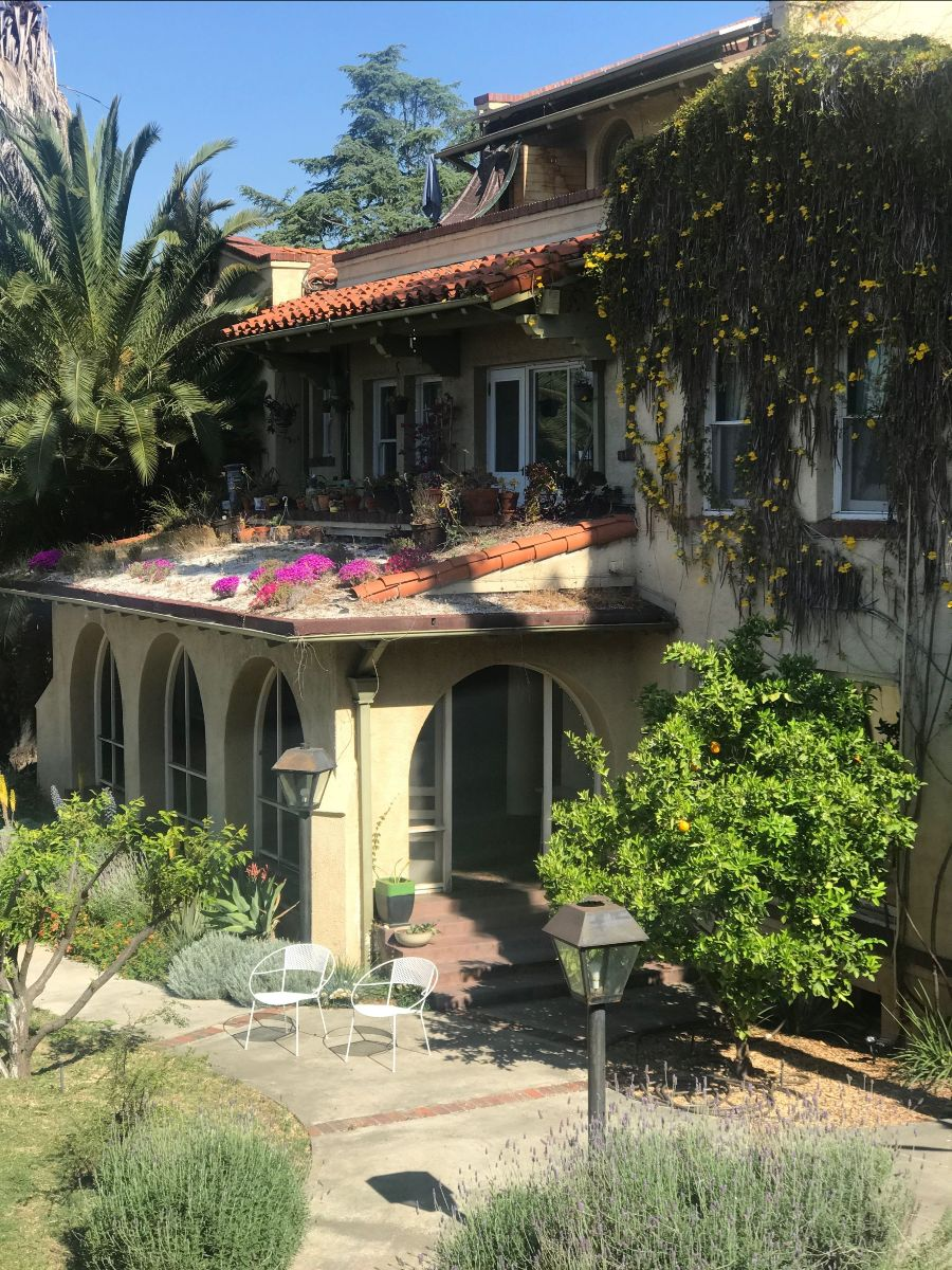 Sunny patio and garden