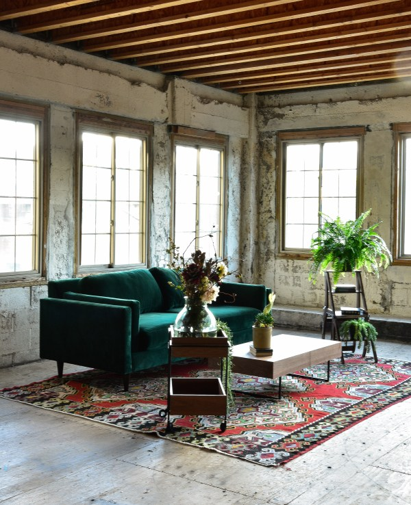 green velvet sofa in living room with decor and plants